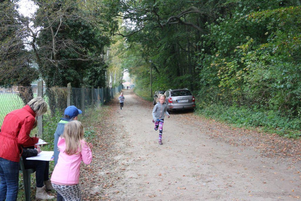 Crosslauf 20.10.2017 Vineta Grundschule Koserow